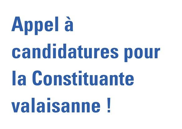 Constituante : appel à candidatures !